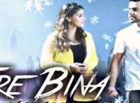 Tere Bina Lyrics by Akhil