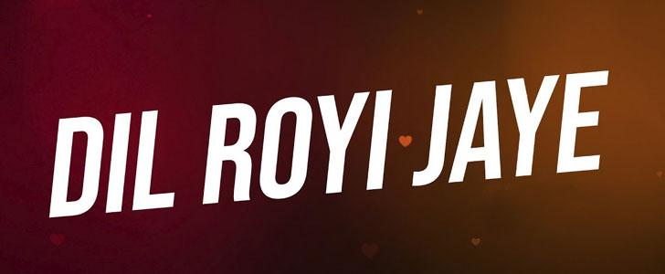 Dil Royi Jaye lyrics from De De Pyaar De