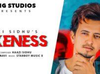 Fakeness Lyrics by Haazi Sidhu