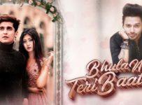 Bhula Na Teri Baatein Lyrics by Stebin Ben