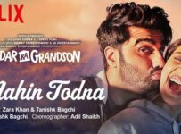 Dil Nahin Todna Lyrics from Sardar Ka Grandson