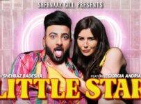 Little Star Lyrics by Shehbaz Badesha