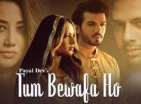 Tum Bewafa Ho Lyrics by Payal Dev and Stebin Ben