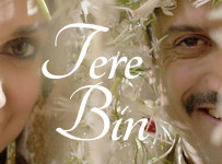 Tere Bin Lyrics from Wazir