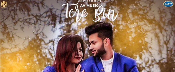 Tere Bin lyrics by Tarik Khan