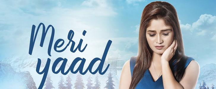 Meri Yaad Lyrics ft Gurmeet Kaur Sidhu