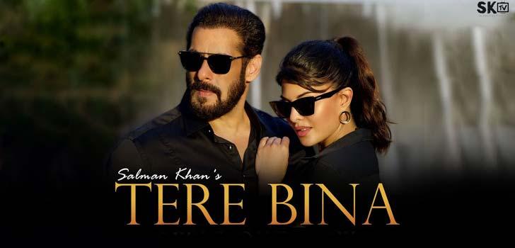 Tere Bina Lyrics by Salman Khan