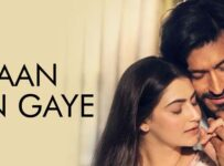 Jaan Ban Gaye Lyrics from Khuda Haafiz