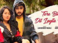 Tere Bina Dil Lagta Nahi Lyrics by Lakhwinder Wadali