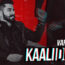 Kaali Duniya Lyrics by Varinder Brar