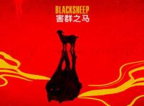 Black Sheep Lyrics by Raftaar