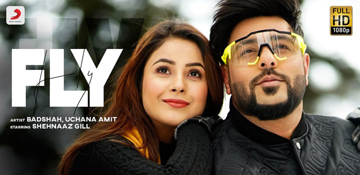 Fly Lyrics by Badshah and Uchana Amit