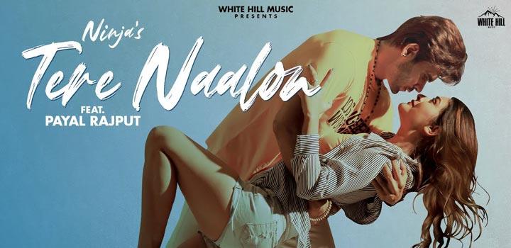 Tere Naalon Lyrics by Ninja