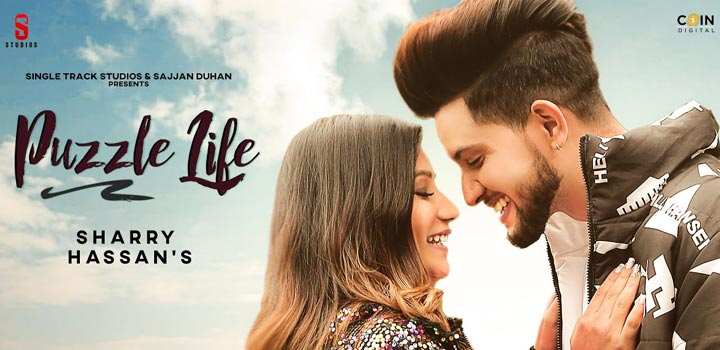 Puzzle Life Lyrics by Sharry Hassan
