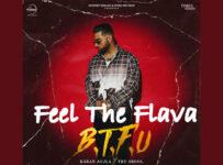 Feel The Flava (It'z All Good) Lyrics by Karan Aujla
